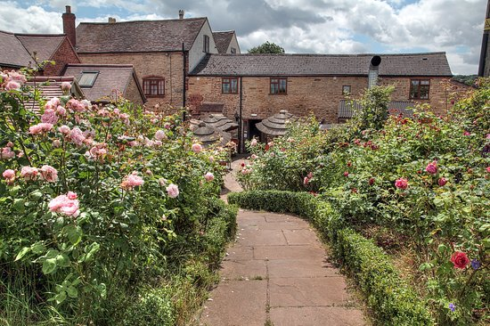 Newent, UK: Rose Garden