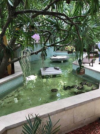 Hyatt Centric Key West Resort and Spa: photo3.jpg
