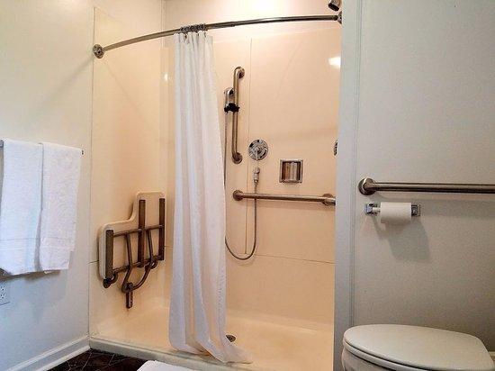 Hot Springs, VA: Handycap Accessible Bathroom