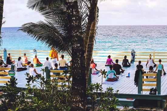 Sivananda Ashram Yoga Retreat Picture
