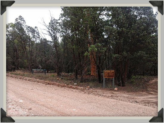 Goondiwindi, Australia: The gravel road is suitable for conventional vehicles.