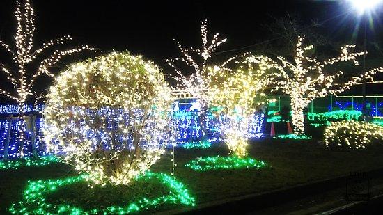 Tainoshoike Park