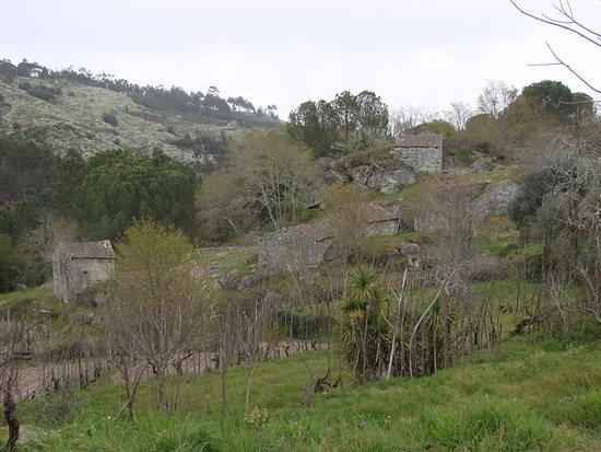 Silgueiros, Portekiz: Póvoa Dão