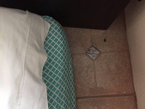 Aqua Bay Villas: Sleeping on the floor with bugs