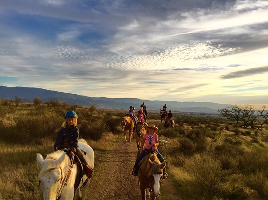 Santa Ynez, CA: Vino Vaqueros Horseback Riding