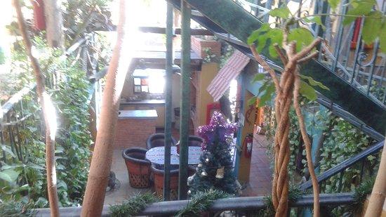 Cabo Inn Hotel: 20161206_135514_large.jpg
