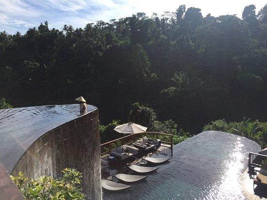 Hanging Gardens of Bali: photo9.jpg