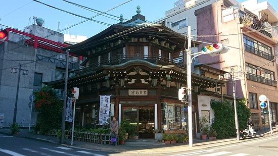 Tokiwagi