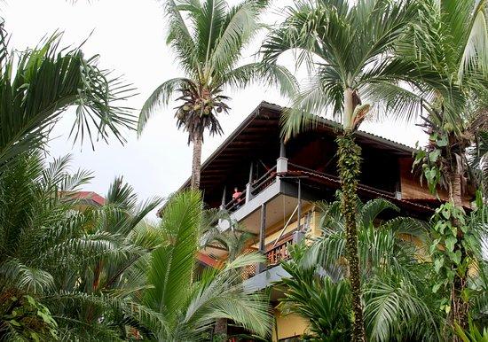 Hotel Mimos : Lush