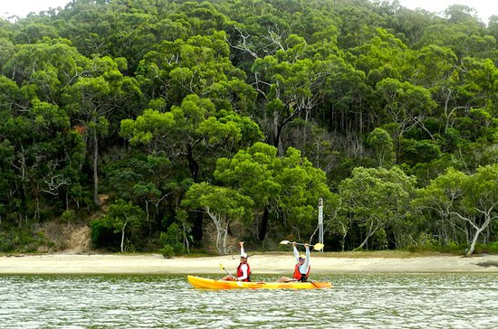 Kayak and Bushwalking Day Tour from