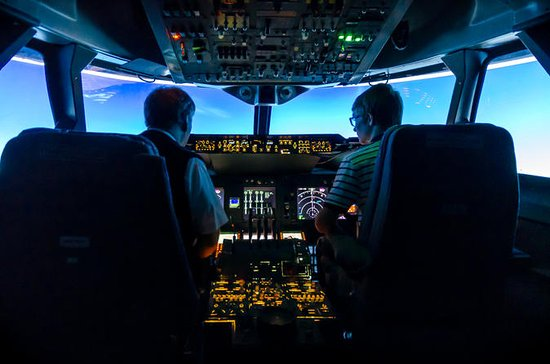 Fly a Real Jet Simulator Around the...