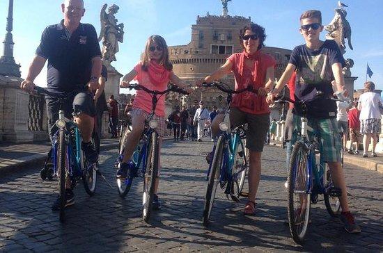 Visita guiada en bicicleta por el...