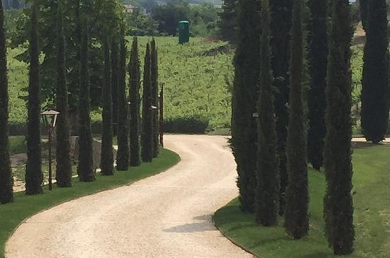 Venice Countryside Tour with Visit to...