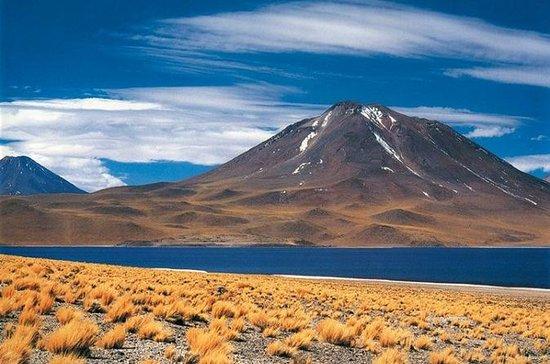 Salzstellen der Atacamawüste, Toconao...