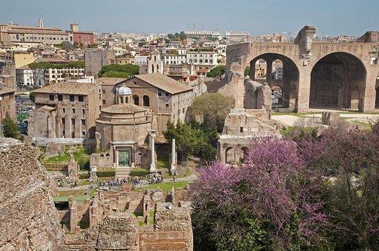 Tour privato: colle Palatino a Roma