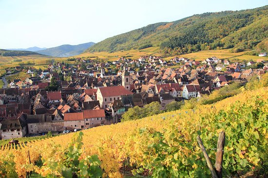 Alsace Wine Route: Tasting Tour from...