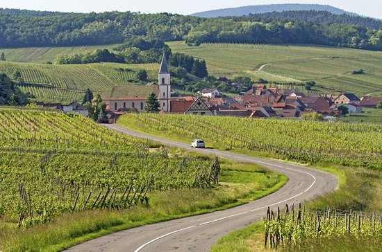Alsace Wine Route: Half-Day Tasting ...