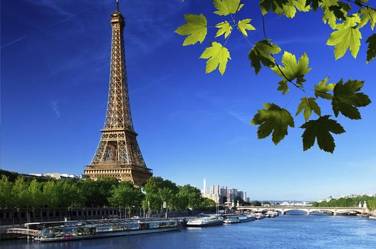 Rundtur i Paris, elvecruise på Seinen...
