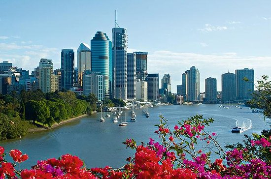Brisbane Sightseeing Tour and...