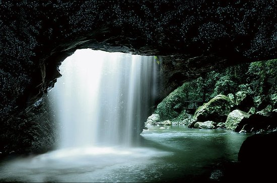 Glow Worm Cave and Natural Bridge...