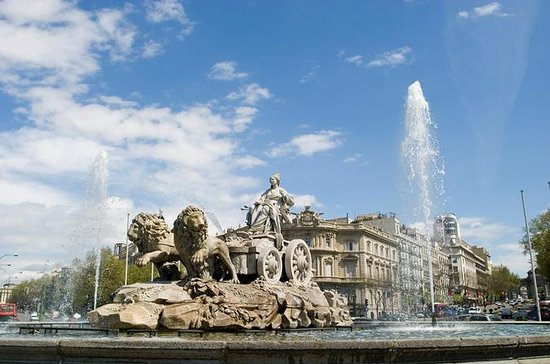 Madrid Combo: City Sightseeing and...