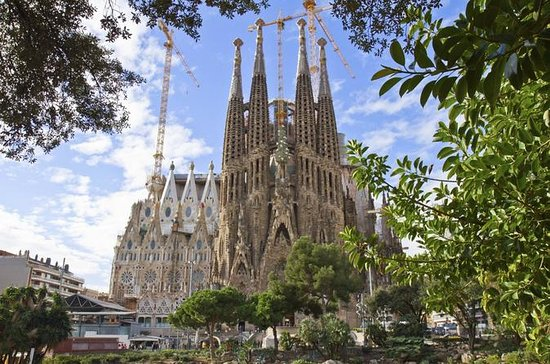 Priority Access: Barcelona Sagrada...
