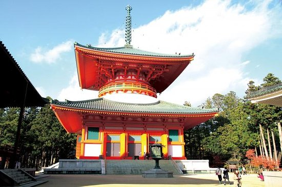 Mt Koya Tour with Overnight Stay at...