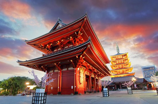 Tokyo morgentur: Meiji-helligdommen...