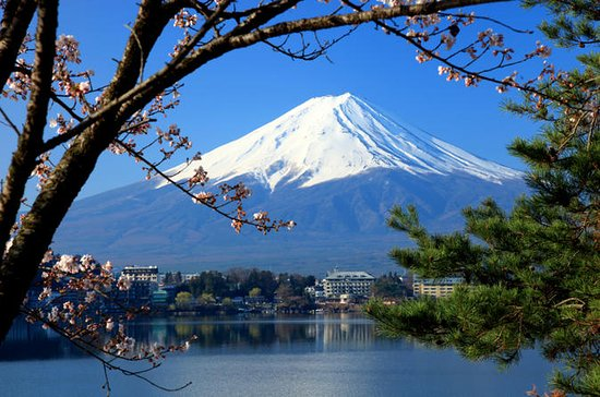 Mt Fuji Day Trip with Lake Ashi Sightseeing Cruise from Tokyo