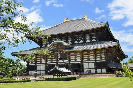 2-Day Kyoto and Nara Rail Tour by...