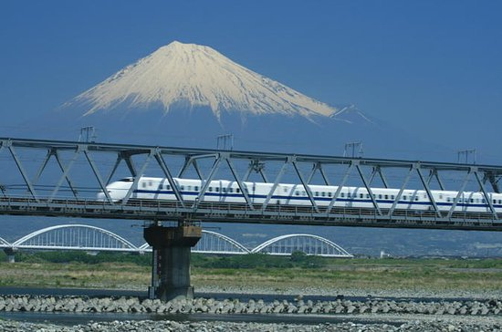 Kyoto and Nara 2 or 3-Day Bullet Train Tour from Tokyo
