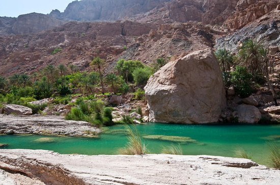 Private 4x4 Wadi Safari - An...