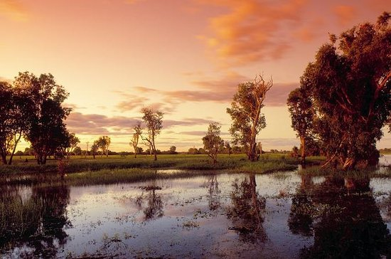 Kakadu Park by Bus, Arnhem Land by ...