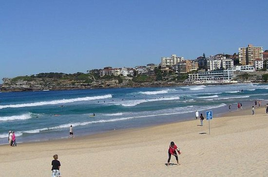 Bondi Beach and Kings Cross Tour...