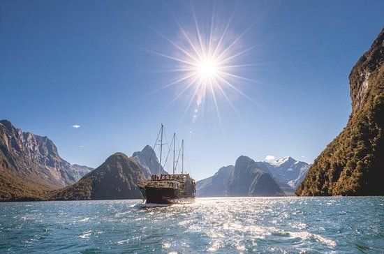 Milford Sound Nature Cruise plus Te...