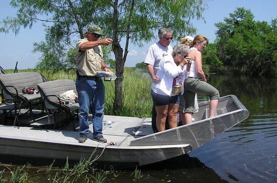 Bayou Airboat Adventure, Plantation Tour from New Orleans