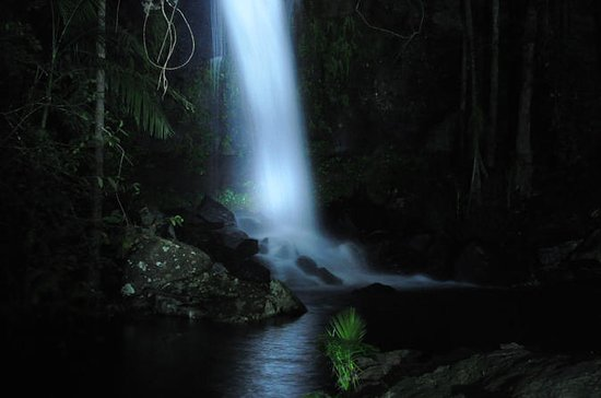 Mt. Tamborine National Park 4WD...