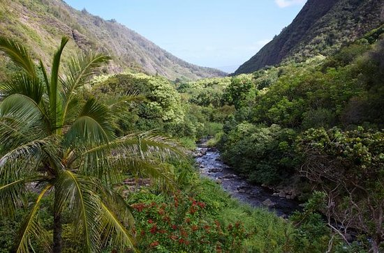 Maui Day Trip: Haleakala, Iao Valley