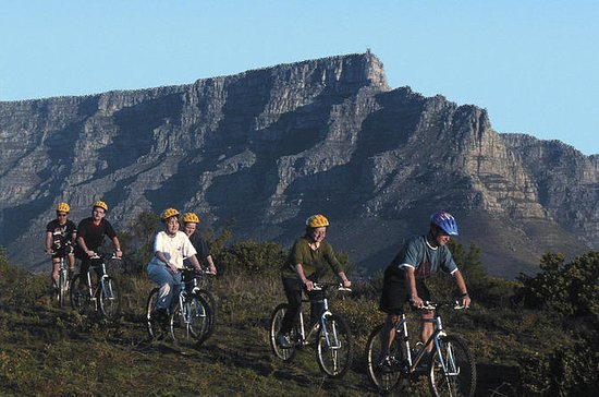 Table Mountain Bike Tour from Cape ...