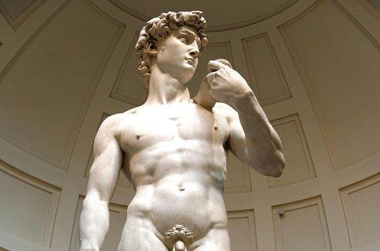 ウフィツィ美術館とアカデミア美術館の自由見学、ランチ オプション付き