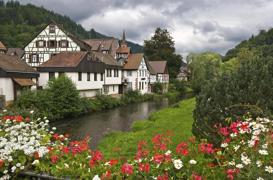 Black Forest and Rhine Falls Day Trip...