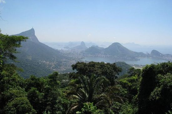Tijuca Rain Forest Jeep Tour from Rio...