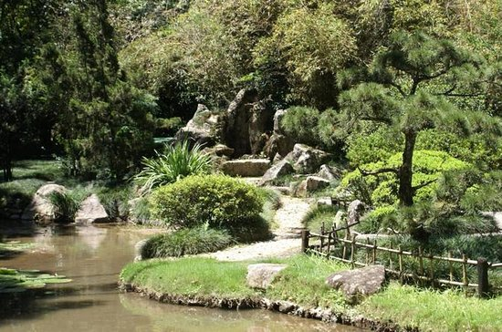Rio de Janeiro botaniska trädgårdstur