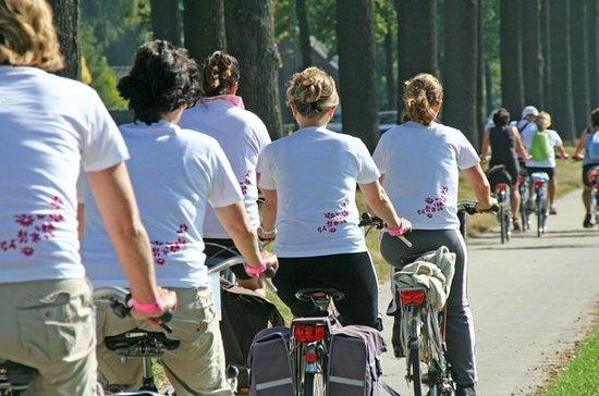 Rio de Janeiro Bike Tour: Ipanema ...