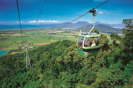 Skyrail Rainforest Cableway Day Trip