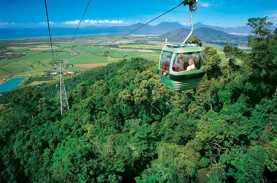 Skyrail Rainforest Cableway Day Trip...