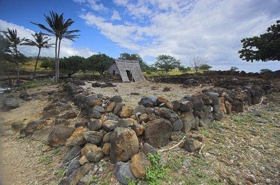 ハワイの聖なる魂を発見する午前半日ツアー