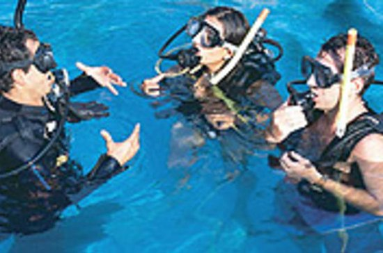 Learn to Dive - Scuba Cursus in ...