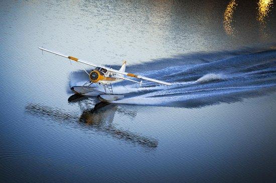 San Francisco 1-Hour Seaplane Tour ...