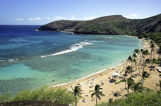 Hanauma Bay Snorkeling Adventure...